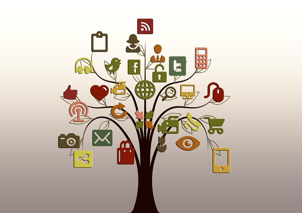 Árbol, Estructura, Redes, Internet, Red, Social